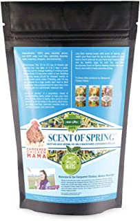 Nesting Herbs for Backyard Chickens - Scent of Spring - Keep Laying Hens Happy, Healthy and Relaxed