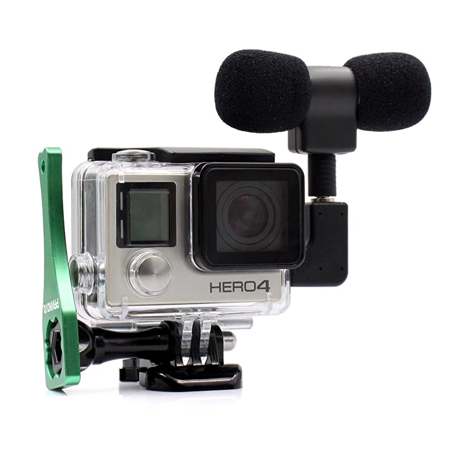 PANNOVO 3.5 mm mic Adapter Microphone Accessories with Side Open Case for Gopro 3/3+/4 and Digital Cameras