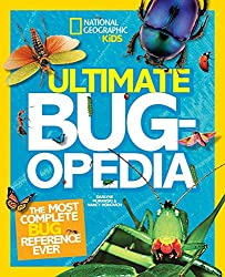 10 Awesome Insect Books For Kids They Will Love 6