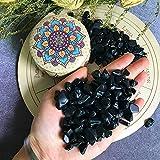 Zenkeeper 1/2 lb Black Obsidian Crystal Chips Stones Bulk Small Crushed Black Obsidian Tumbled Stone