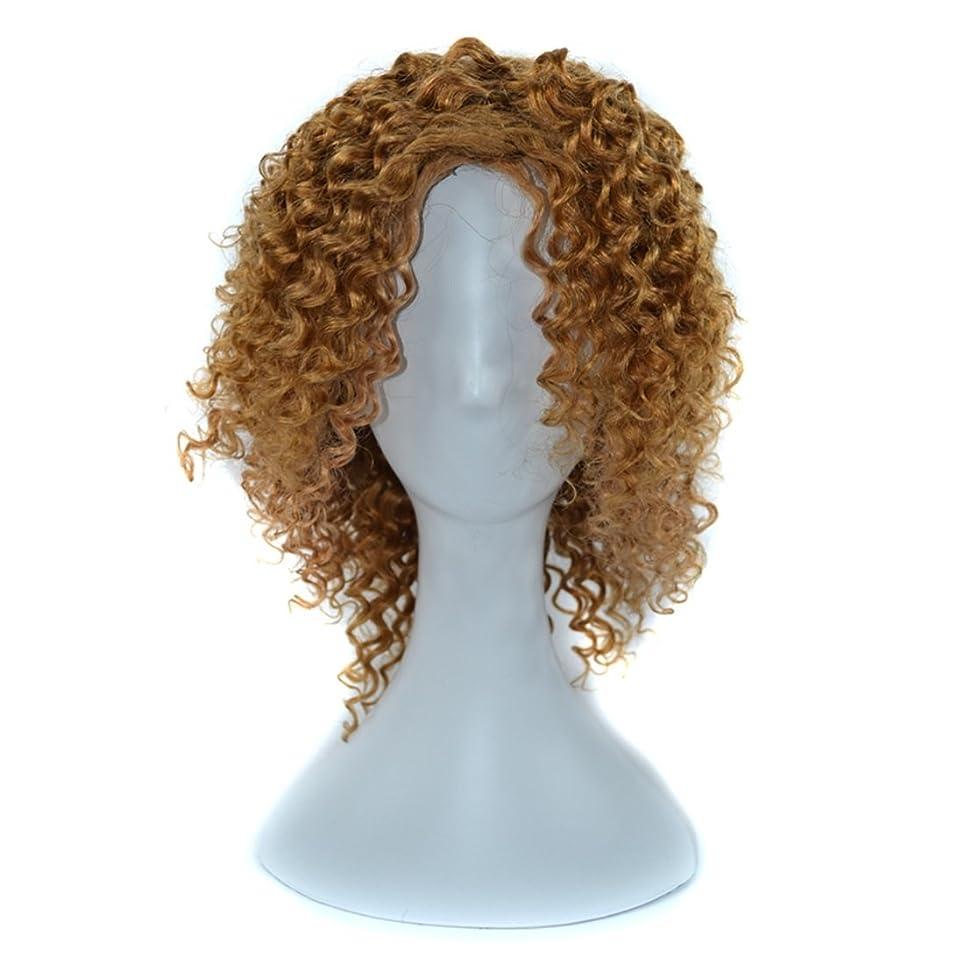 ヒロインリーズ腹YOUQIU 傾斜前髪髪を持つ女性黒浮き、赤やライトブラウンディープカールウィッグはウィッグセットのウィッグを染めすることができないために14インチ本物の人間の髪の毛 (色 : 淡い茶色)