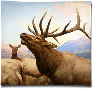 Kjaoi 1818 Inches Pillow Case Nature Tibetan Antelope Comfortable Soft Bed Pillow Case Household Pillow Case Office Bolster