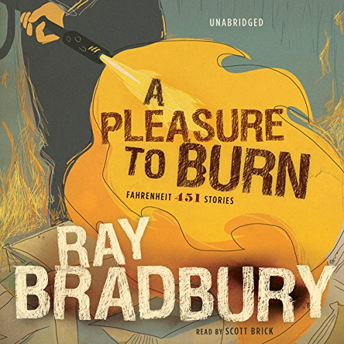 A Pleasure to Burn audiobook cover art