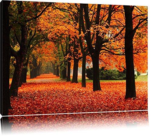 Baumallee im Herbst Format: 120x80 auf Leinwand, XXL riesige Bilder fertig gerahmt mit Keilrahmen, Kunstdruck auf Wandbild mit Rahmen, günstiger als Gemälde oder Ölbild, kein Poster oder Plakat