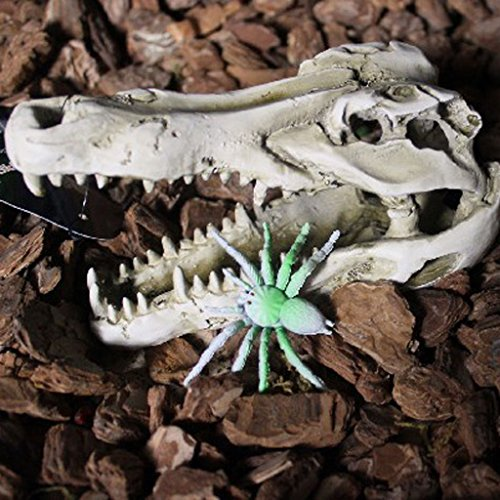 PETSOLA Reptil Terrarien Dekoration Terrarium DIY Landschaftsbau Ornament Krokodil