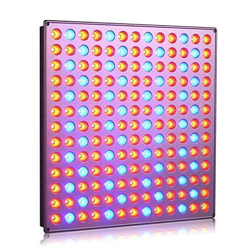 YASBED LED Pflanzenlampe, 75W Wachstumslicht für Zimmerpflanzen Vollspektrum Pflanzenlicht für Sämlinge, Hydroponik, Gewächshaus, Sukkulenten, Blumen-1Pc