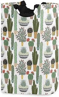 COFEIYISI Grand Organiser Paniers pour Vêtements Stockage,Modèle avec des Plantes succulentes et des Cactus dans des Pots ...