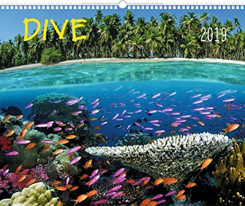 Dive - Kalender 2019 - Delius-Klasing-Verlag - Tauchkalender - Wandkalender Wassersportler - 56 cm x 45,5 cm