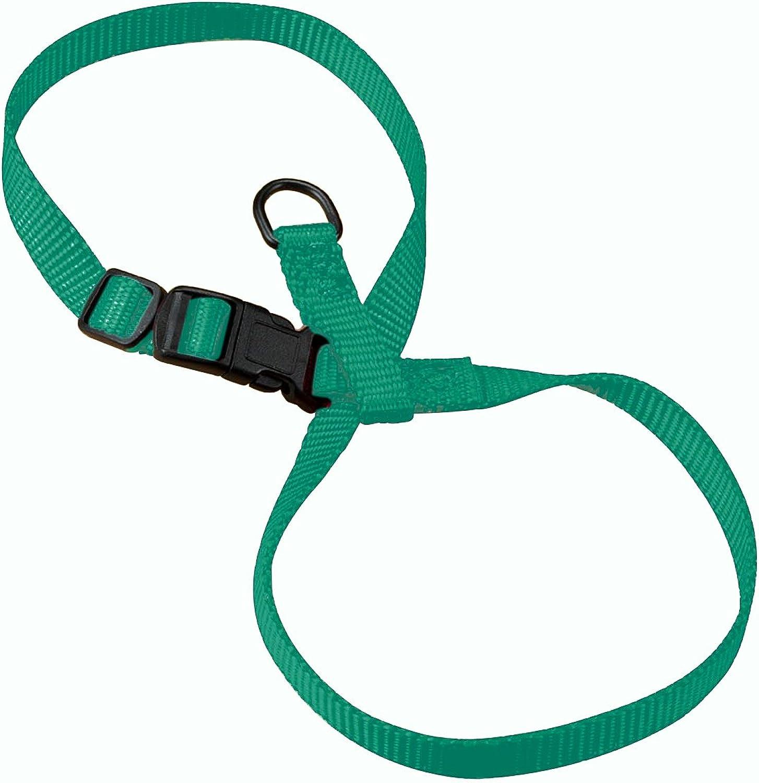 Hamilton CHEA MDGN 3 8Inch Adjustable Figure 8 PupCat Harness, Medium, Green