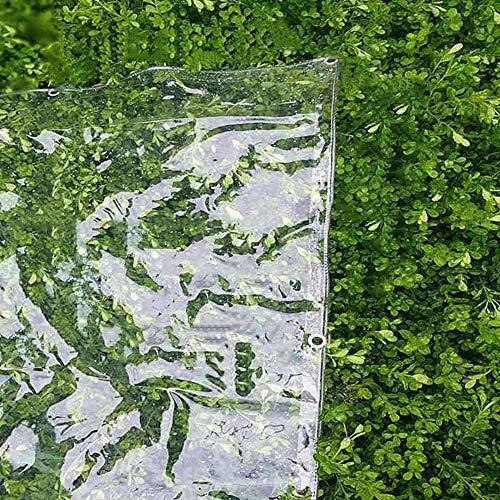 Plane PVC-Klarsichtplane mit Ösen, 100% wasserdichte Isolierplane für Gartenterrassen-Balkonabdeckung, pflegeleicht - 520 g/m² (Size : 2×3m)