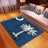 CMYKYUH Alfombra Salon Coco Azul 200 x 300 cm Alfombra De Salón Moderna Artificial Alfombra, Alfombra de imitación de Piel de Cordero, para salón Dormitorio baño sofá Silla cojín