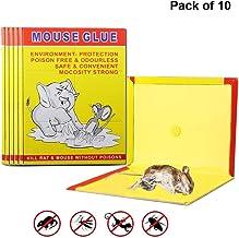SUPER TOY Sticky Rat Killer Glue Pad Mouse Trap Set of 10