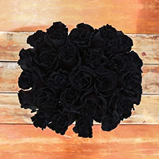 Rosaholics Black Dragon Rose Bouquet Ecuador Direct Farm to Door Delivery (Fresh-Cut-Flowers)-12 Roses