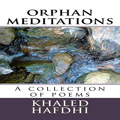 Orphan Meditations audiobook cover art