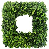 LMflorals Preserved Boxwood Wreath Decor 12 inch, Nature Real Handcrafted Boxwood Square Wreath Green Garland for Indoor Farmhouse Decorations Wreath Wall Window Home Décor (12 inch)