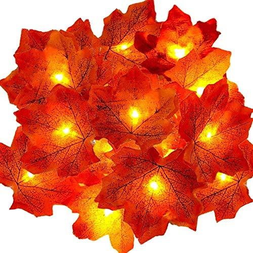 SDFD Guirnalda de otoño iluminada Decoración de otoño Halloween Navidad Acción de Gracias Hojas Decoración de Pared 4.5m 30LED