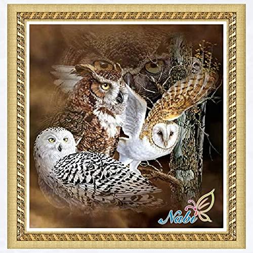 DIY 5D Kit de pintura de diamantes Owl Crystal Rhinestone bordado imagen artesanía regalos para decoración del hogar Diamante redondo 40x40cm