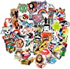 Cool Random Stickers 55-700pcs FNGEEN Laptop Stickers Bomb Vinyl Waterproof Stickers Variety Pack for Luggage Computer Skateboard Car Motorcycle Decal for Teens Adults (55 PCS) #1