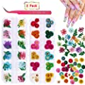 Dried Flowers for Nail Art, KISSBUTY Dry Flowers Mini Real Natural Flowers Nail Art Supplies 3D Applique Nail Decoration Sticker for Tips Manicure Decor