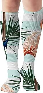 Beautiful Tropical Anchor Flamingo Vintage Sports Recreation Compression Socks Unisex Printed Socks Fun Long Cotton Socks Over The Calf Tube 19.7 Inch