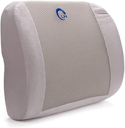 RTYou Lumbar Support Back Pillow Office Chair and Car Seat Cushion - Memory Foam with Adjustable Strap and Breathable 3D Mesh