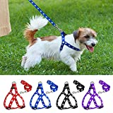 PSK PET MART Nylon Adjustable Printed Dog Harness (Blue, 0.75-inch)