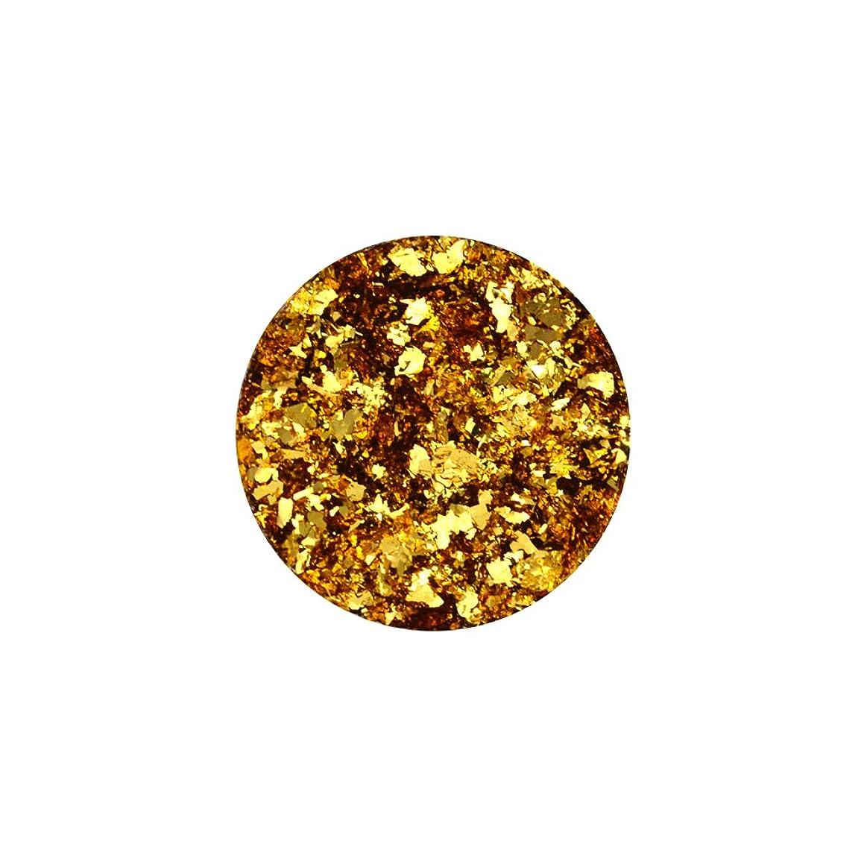 バースト北西助言する乱切りパウダーホイル 【ゴールド】金箔 ホイル