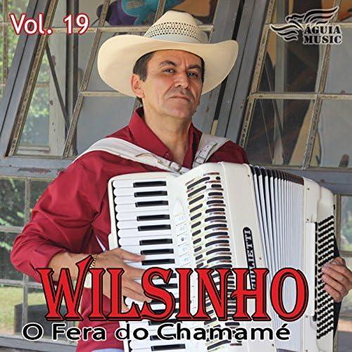 Wilsinho