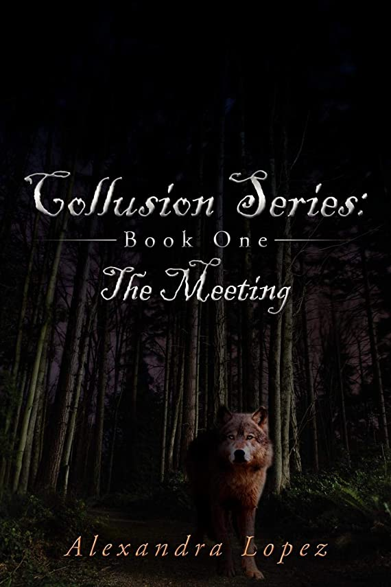 The Meeting (Collusion Series)