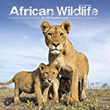 African Wildlife Calendar 2019