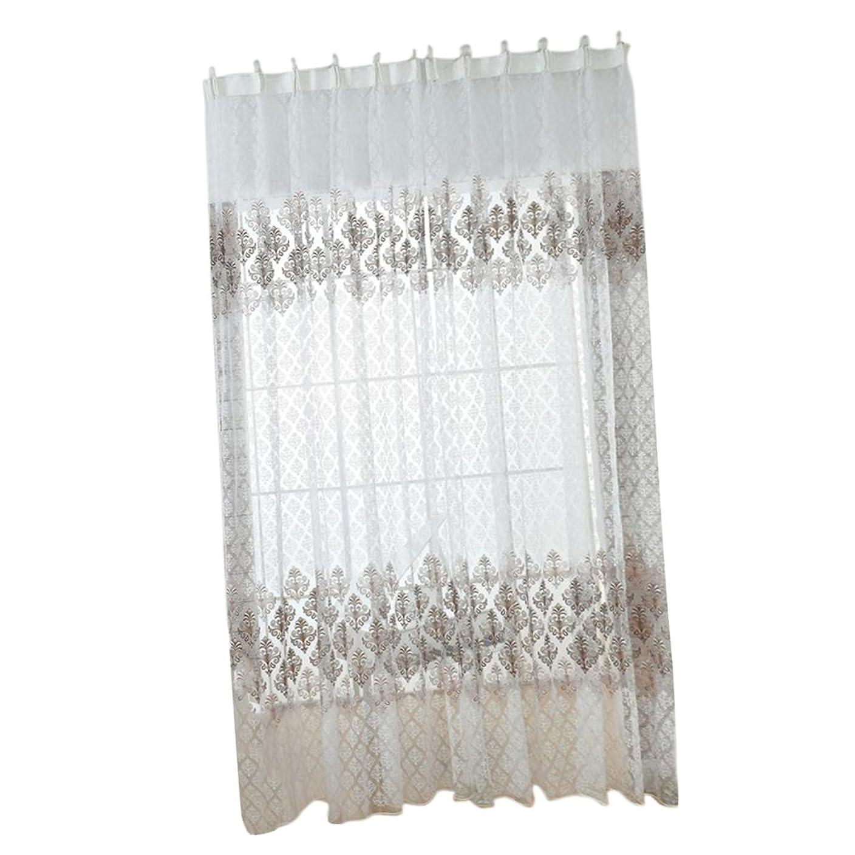 人類ノーブルクラックチュール カーテン ボイルカーテン 自然の風を通し 透け感 窓 ドアカーテン チュール 薄手 ブラウン