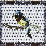 Bluebird by Sarah White (2000-04-25)