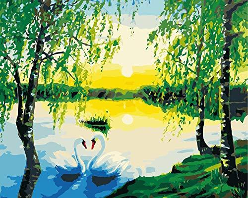 Pintura por Números Pareja de cisnes, en, río, lago, ocaso para Adultos y niños Pintar Diy al óleo de Bricolaje con Marco Pinceles Principiantes Hogar Lienzo Decoraciones Colores Acrílica Conjunto