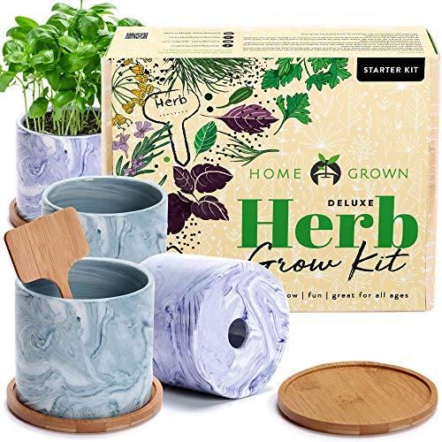 Indoor Herb Garden Starter Kit – Herb Seeds Gardening Kit Planting Pots & Potting Soil – Heirloom & Non GMO – DIY Home Seed Starter Herb Garden Grow Plant Kit (Ceramic Pots)