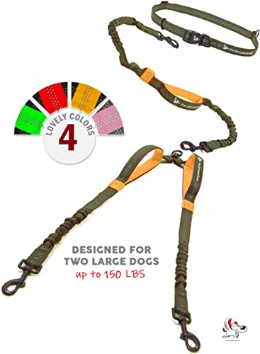Pet Dreamland Double Leash Hands Free - Two Dogs Coupler Complete Set - No Tangle, No Pull Tandem Dual Bungee Lead (K...