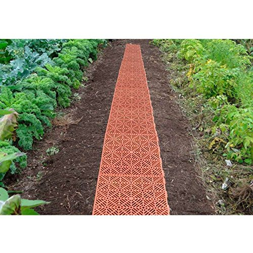 Mundus 33149 Lot de 5 Dalles de Jardin Potager, Marron, 29 x 29 x 1,5 cm