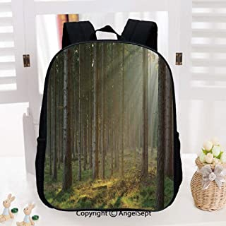 School Backpack,Sunbeams Comes into Natural Misty Spruce Forest from the Right Top Picture Print School Bags Student Stylish Book Bag Daypack for Little Boys and Girls,Tan and Brown