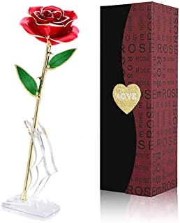 Red Birthday and Mothers Day Red Gold Plated Rose 24k Gold Dipped Rose Everlasting Long Stem Real Rose with Exquisite Holder,Romantic Gift for Valentines Day Anniversary YINXN 24k Gold Rose