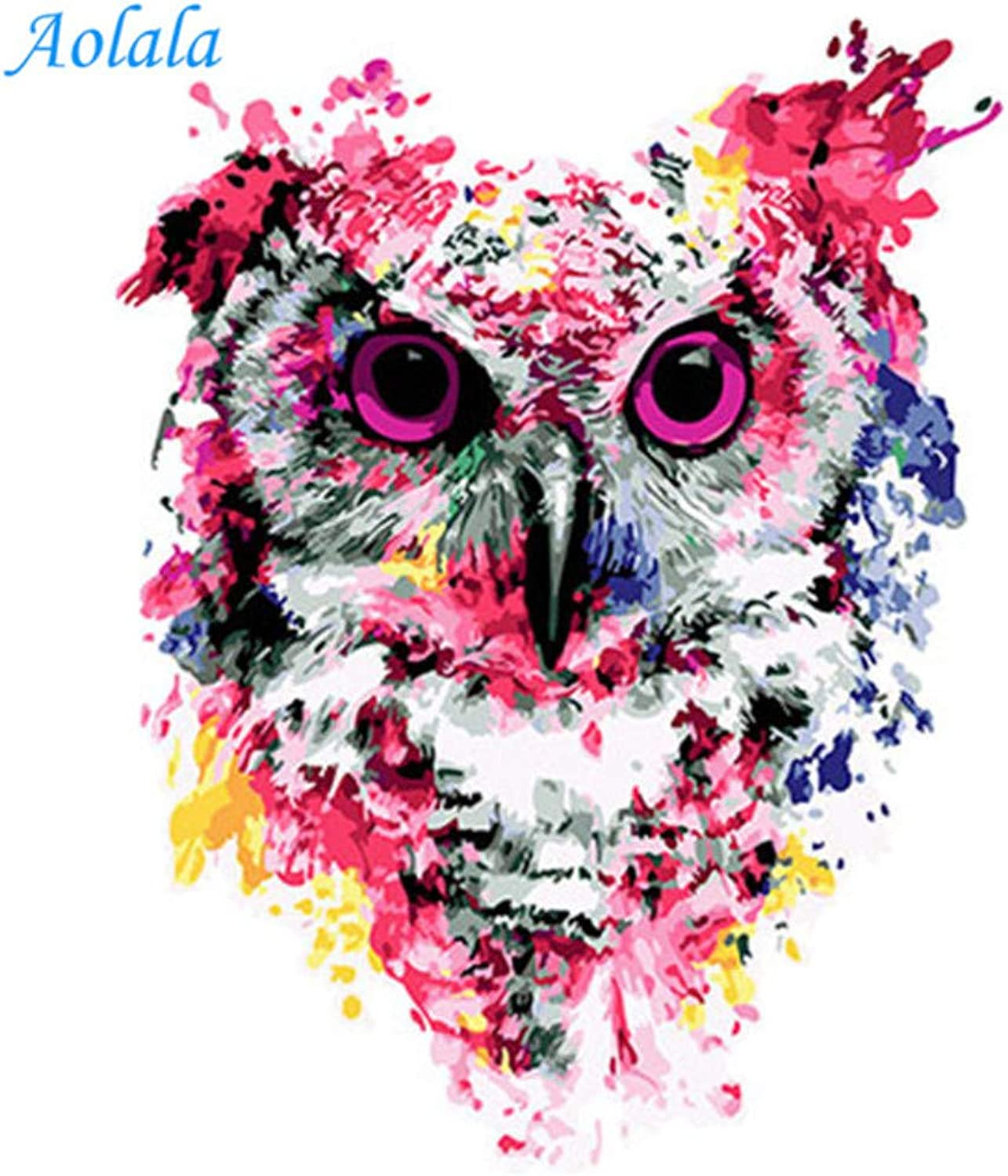 colorful Owl Framed Pictures DIY Painting by Numbers DIY Oil Painting On Canvas Home Decoration Wall Art,60x75cm