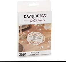 25 Die Cut Lace Paper Place Cards David Tutera Illusion White