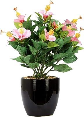 Fourwalls 31 cm Tall Artificial Hibiscus Flowers Fixed in a Glazed Ceramic Pot (Pink) + Artificial Gorgeous Jasmine Flower Sticks (90 cm Tall, Dark/Pink, Set of 3)