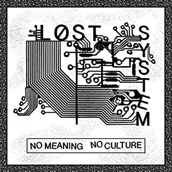 No Meaning No Culture