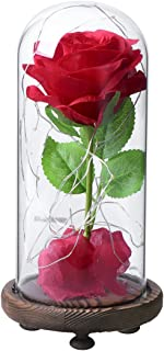 Red Silk Rose in Glass Dome with LED Light Decor Beauty and Beast Rose for Her for Valentines Anniversary Birthday