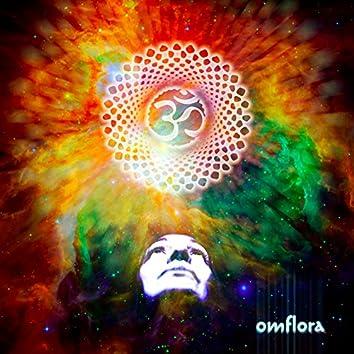 Omflora Album, Pt. 2