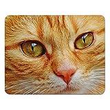 """Addies Mousepad """"Katzen"""", schönes Mauspad mit Katzen Motiv in feiner Cellophan Geschenk-Verpackung mit Kautschuk Untermaterial, 240x190mm, Katzen Motiv-7"""