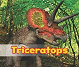 Triceratops (All About Dinosaurs)
