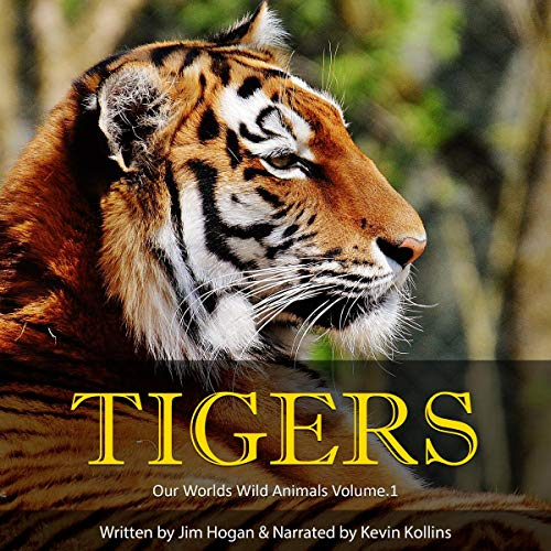 Tigers: Amazing Tiger Facts and Pictures cover art