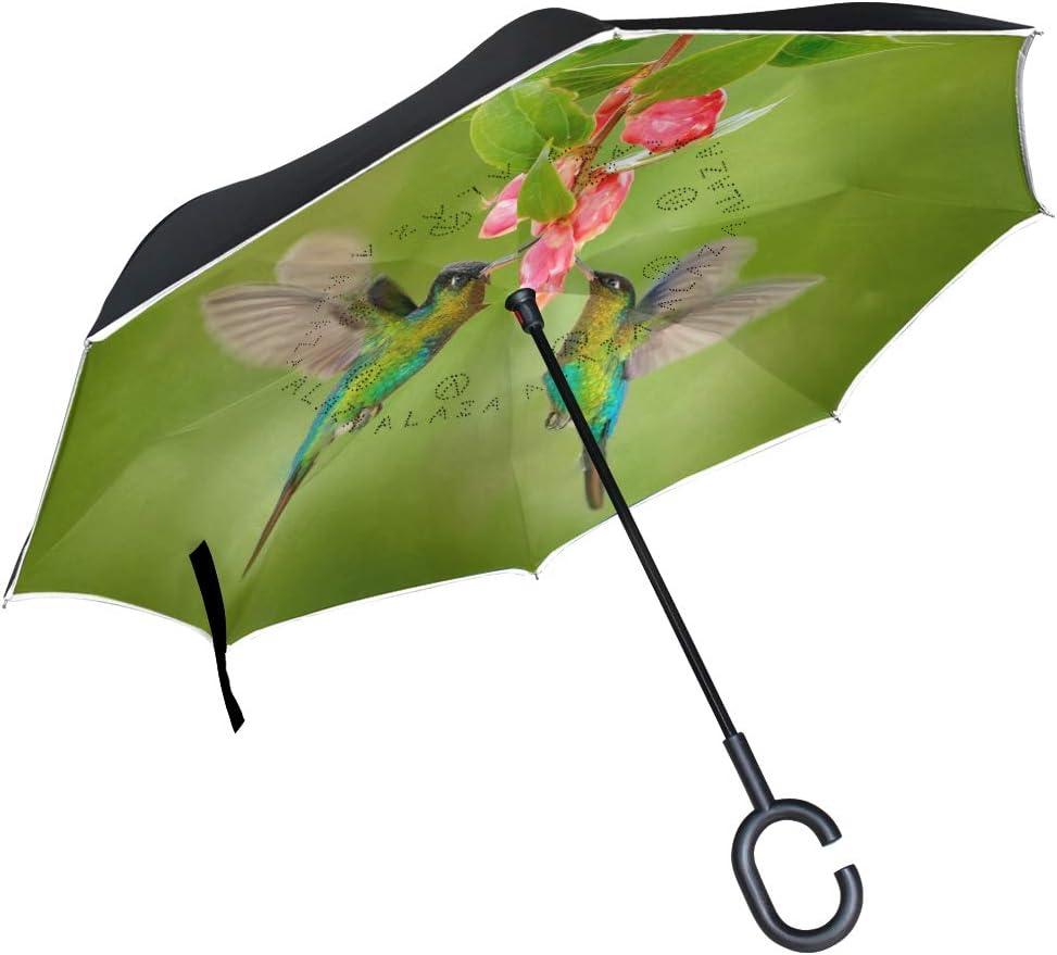 SLHFPX Reverse Umbrella Sugar Skull Windproof SEAL limited product Inverted Umb Indefinitely Music