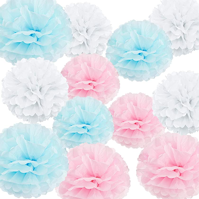 "HappyField 12PCS 10"" 12"" Baby Pink Blue White Tissue Paper Pom Poms Flower Gender Reveal Party Supplies Gender Reveal Party Decorations Boy or Girl Baby Shower Decorations Pink and Blue Decorations"