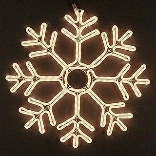 Novelty Lights 24